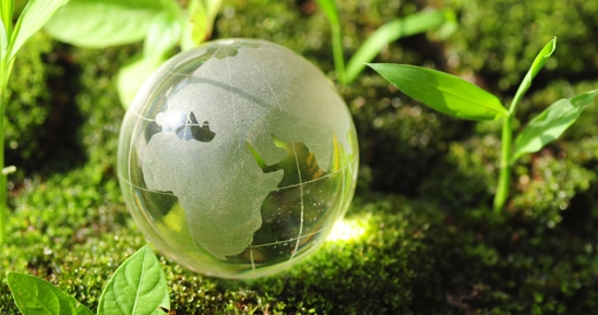 Toy Globe with Saplings